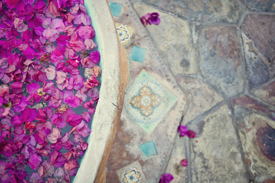 Enchanted-garden-wedding-outdoor-venue-purple-flower-petals.full