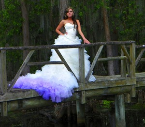 photo of ombre wedding dress