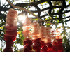 Outdoor-wedding-reception-decor-ombre-hanging-backdrop.square