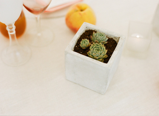 elegant real wedding outdoor reception under tent simple succulent centerpieces