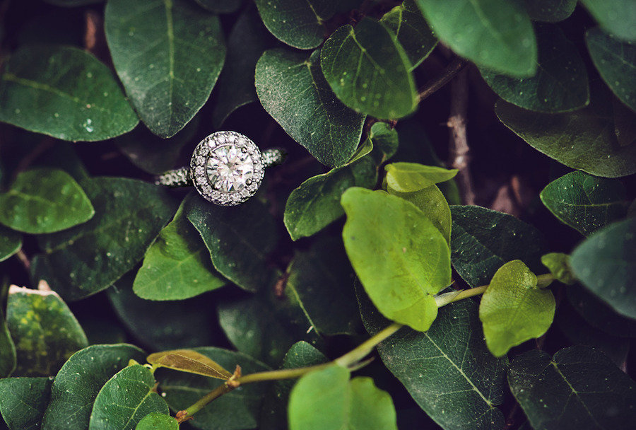 round diamond engagement ring peeks out from trees
