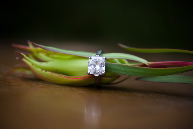 Wedding-facts-why-86-percent-of-women-get-engaged-for-the-engagement-ring-1.full