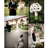 Black-white-anemone-wedding-flowers.square