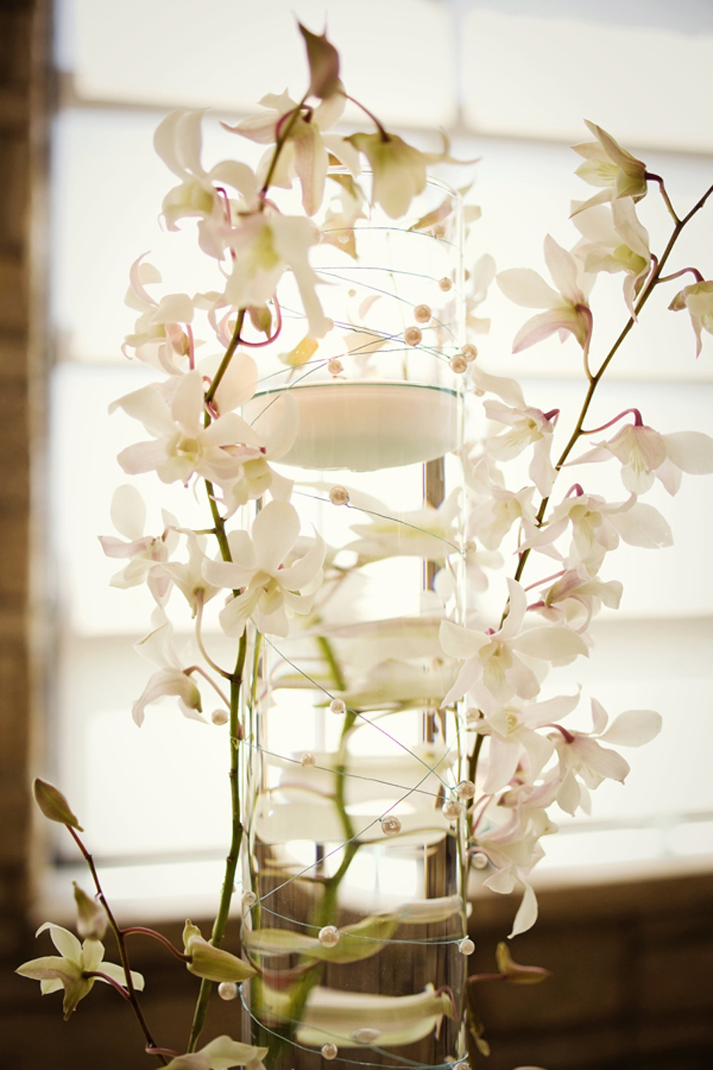White Orchid Centerpiece Wedding Reception Flowers Decor