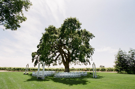 get married under a tree outdoor wedding venues