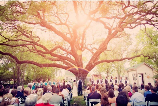 wedding under tree via weddingsbycolor