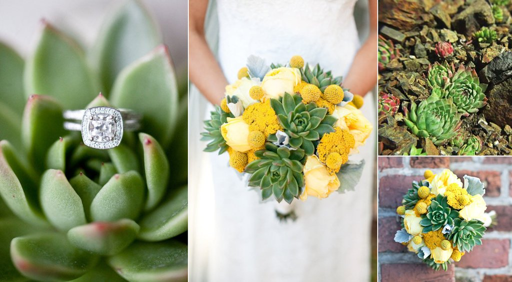 Types Of Succulent Wedding Flowers Eco Friendly Wedding Ideas OneWed