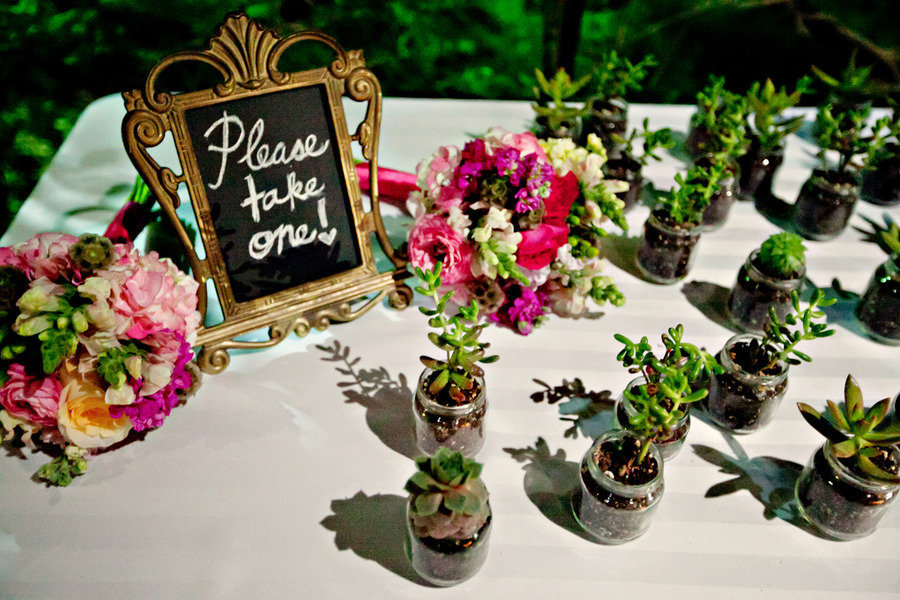 Eco-friendly-wedding-guest-favors-succulents.full