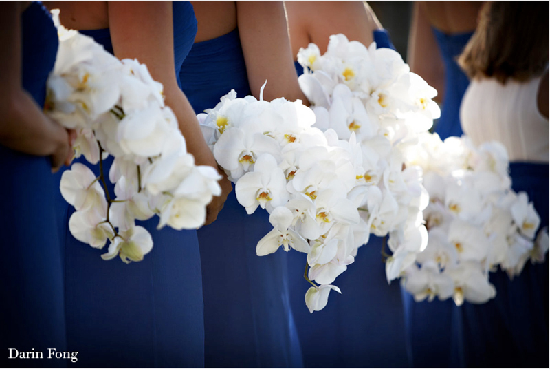 monochromatic wedding flowers bridesmaids bouquets white phalaenopsis
