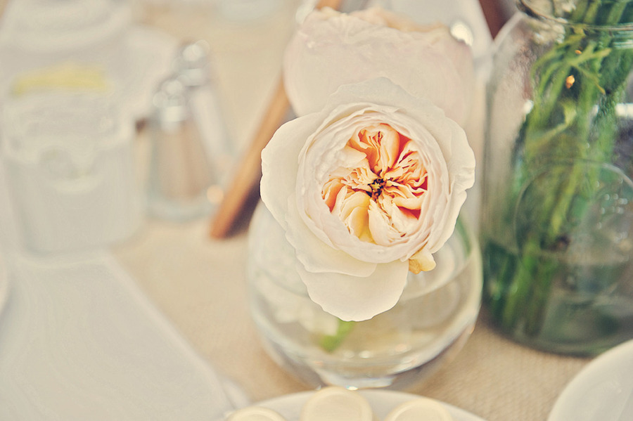 Vintage-wedding-style-simple-reception-centerpieces-peach.full