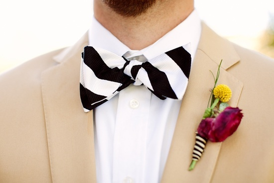 dapper groom black white striped bow tie