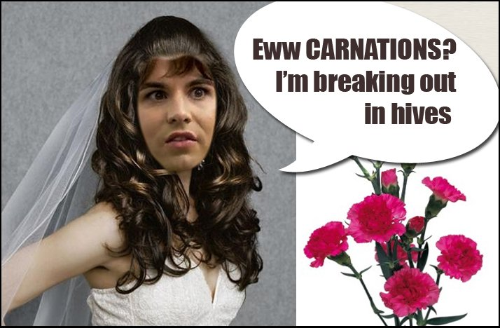 Shit-brides-say-no-to-carnations.full