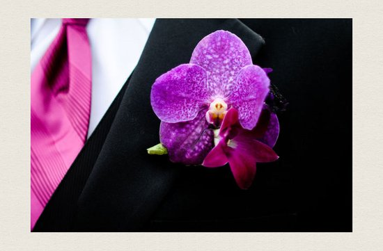 photo of grooms boutonniere magenta wedding color palette orchids