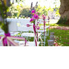 Wedding-ceremony-outdoor-venue-magenta-wedding-flowers.square