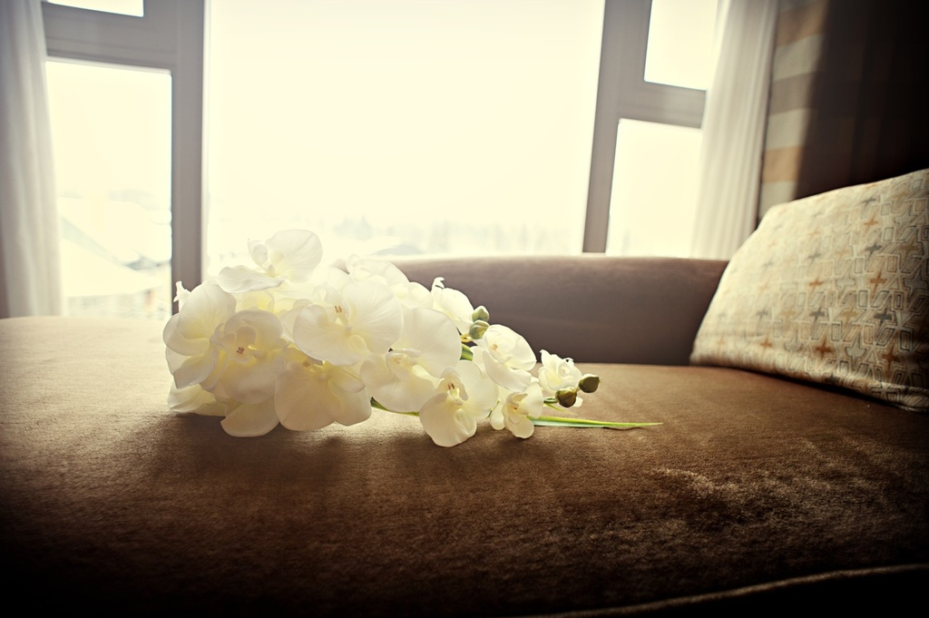 Simple-orchid-bridal-bouquet-cascading.full