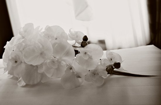 black white wedding photo orchid bouquet