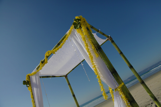 Bamboo_Wedding_Canopy_Arc_de_Belle_images-1