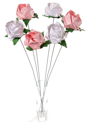 Hanawave_roses_pinkwhite_sm.original.full