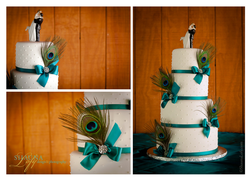 Cake_collage.original.full
