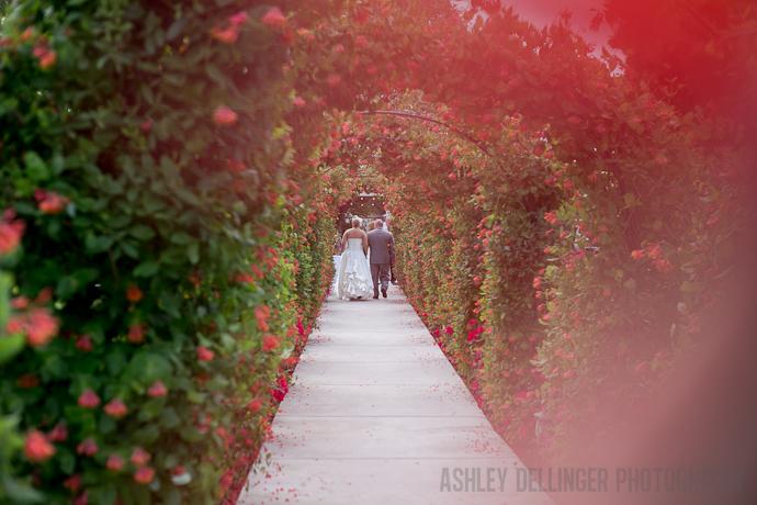 Ashleydellingerphotography%20(560%20of%201224).full