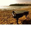 My%20new%20slam%20grand%20piano%20shell%20at%20emerald%20bay%20beach.square