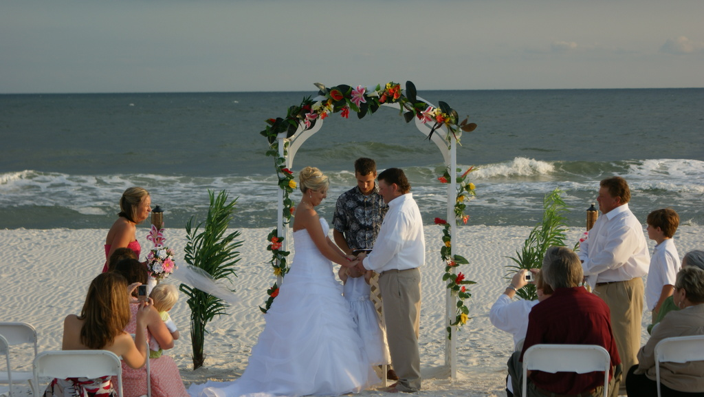 Teri Lynn Productions Wedding & Event Planner