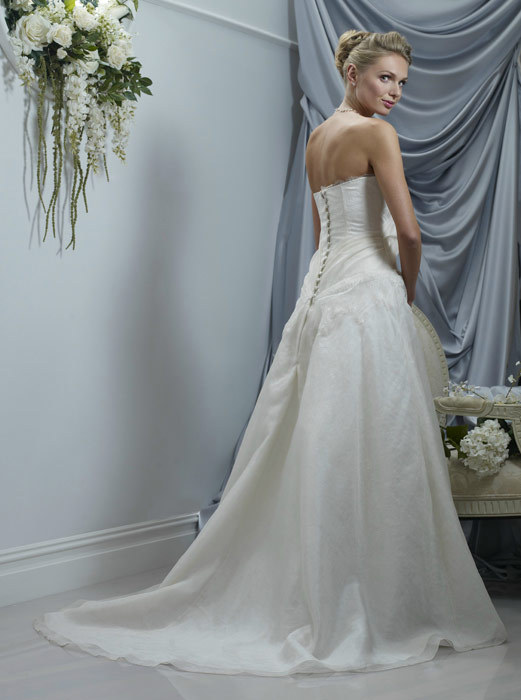 Spring-2011-patricia-strapless-ivory-a-line-wedding-dress-back.full