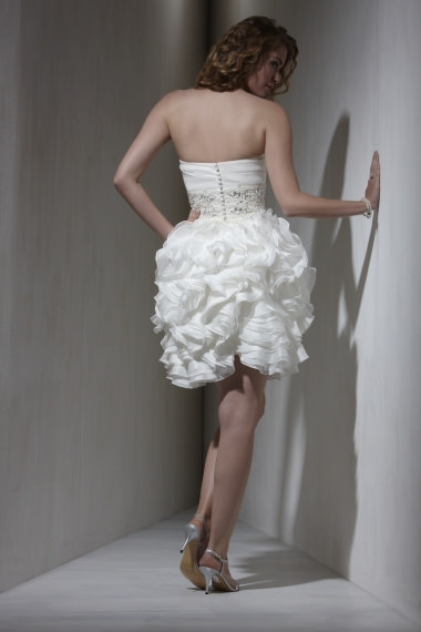 photo of 5580 Dress