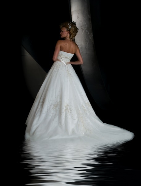 Christina-wu-wedding-dresses-15428-back.full