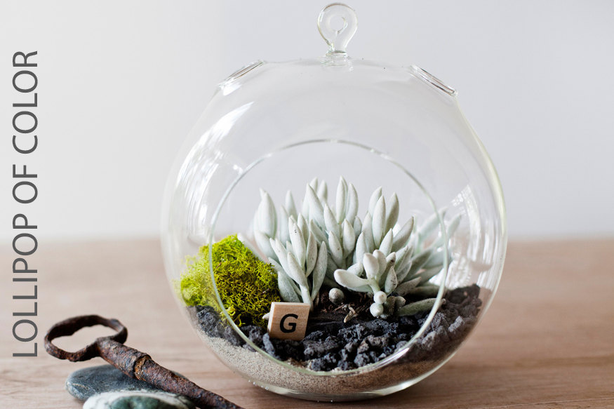 simple wedding centerpieces for a handcrafted wedding succulent scrabble terrarium