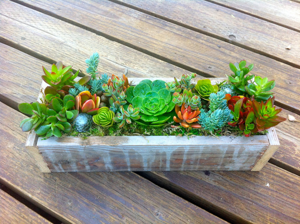 Simple-wedding-centerpieces-for-a-handcrafted-wedding-bright-green-orange-rust.full