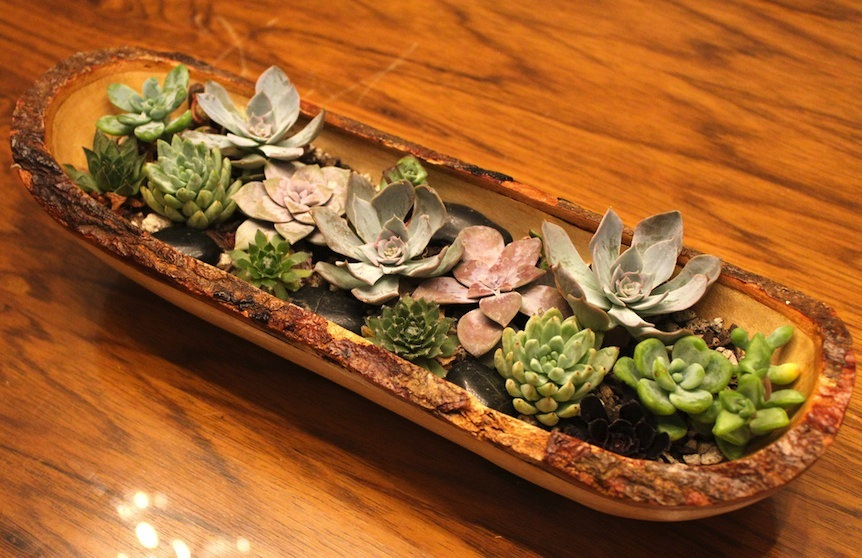 Simple-wedding-centerpieces-for-a-handcrafted-wedding-succulents-in-rustic-wood-trough.full