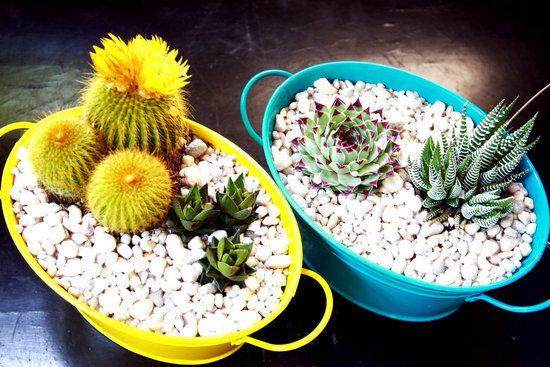 simple wedding centerpieces for a handcrafted wedding desert succulents