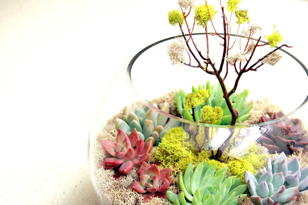 Simple-wedding-centerpieces-for-a-handcrafted-wedding-fishbowl-terrarium.full