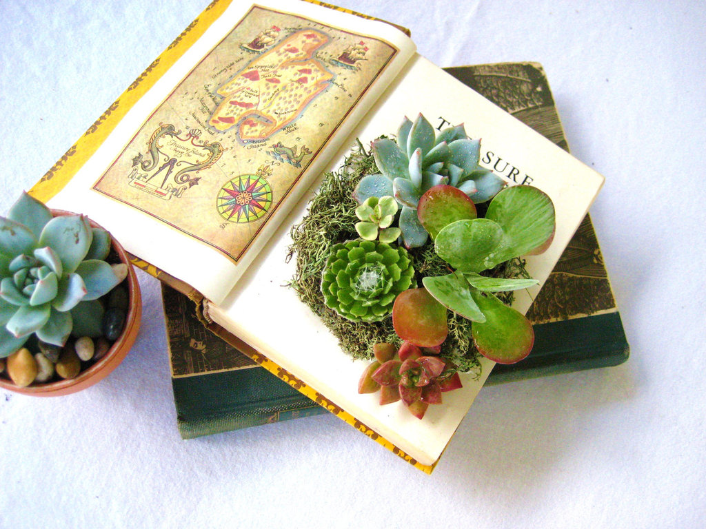 Simple-wedding-centerpieces-for-a-handcrafted-wedding-succulent-centerpiece-with-vintage-books.full