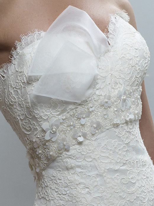 Spring-2011-constance-strapless-drop-waist-ball-gown-lace-empire-detail.full