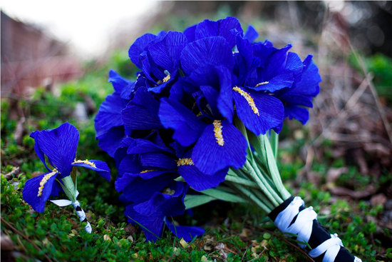 wedding flower alternatives bridal bouquets from Etsy cobalt blue paper