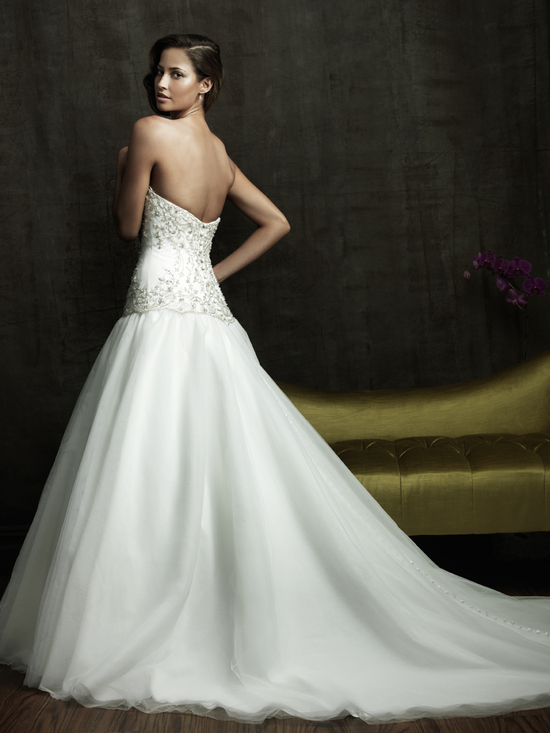 photo of 8818 Dress