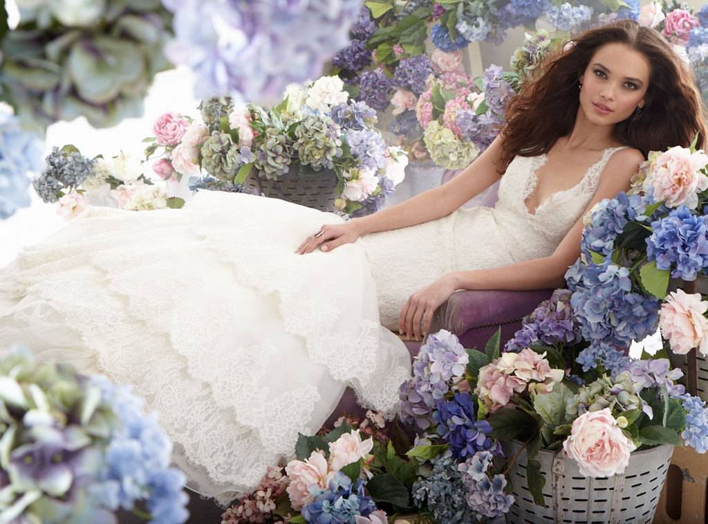 Fall-2012-wedding-dress-jim-hjelm-bridal-gowns-lace-v-neck.full
