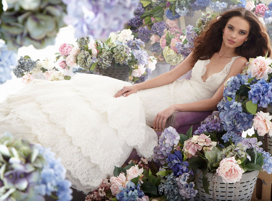 fall 2012 wedding dress jim hjelm bridal gowns lace v neck