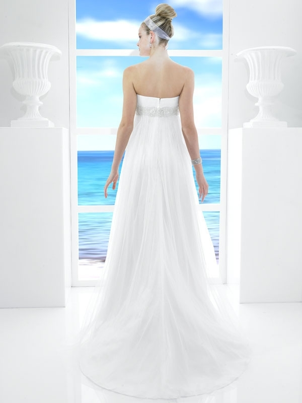 T488-white-spring-2011-tango-wedding-dress-strapless-empire-modified-a-line-back.full