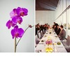 Colorful-modern-wedding-classic-white-with-bright-pops-reception-decor-flowers-1.square