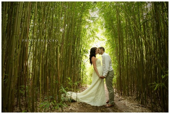 bride groom kiss beneath high bamboo destination wedding