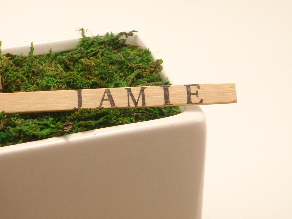 Wedding-reception-details-natural-bamboo-escort-cards.full