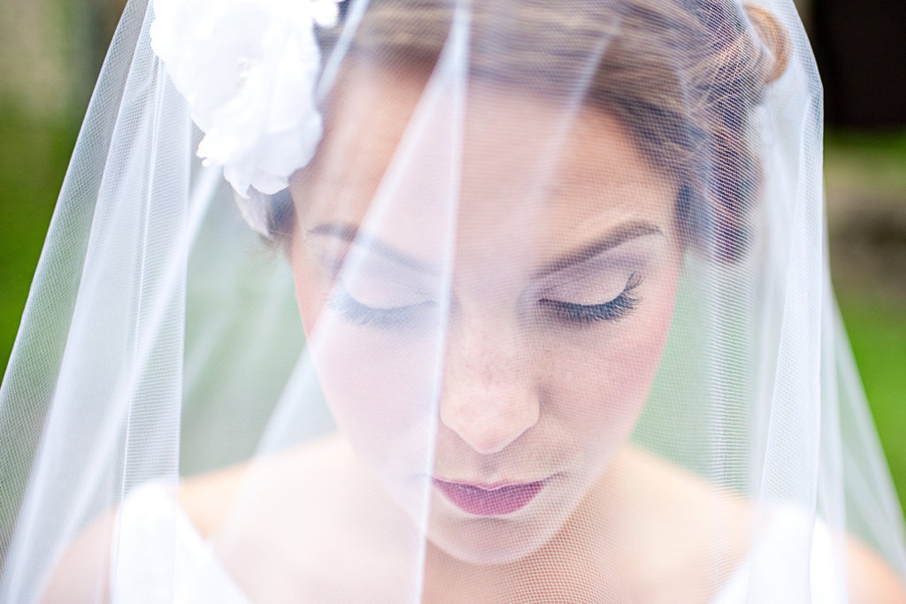 Sheer-bridal-veil-with-white-rosettes.full