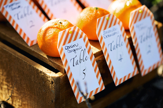 rustic citrus wedding inspiration outdoor spring wedding ideas unique escort cards