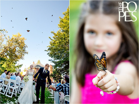 outdoor wedding ceremony butterfly release 2