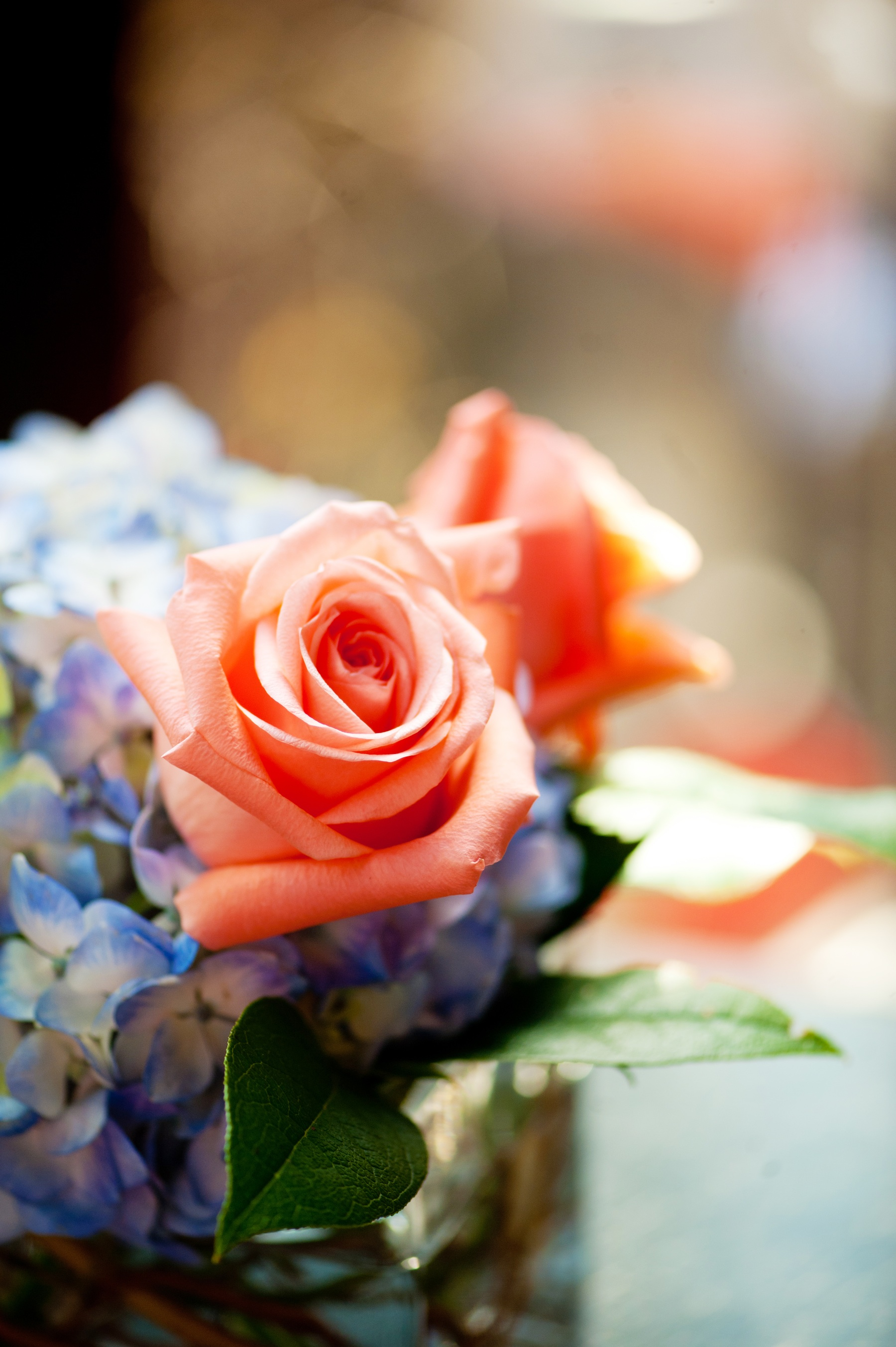 Elegant-real-wedding-with-simple-diy-details-centerpieces-coral-roses.original