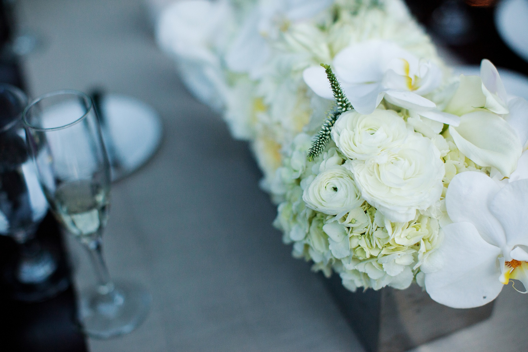 White roses and hydrangeas centerpiece quotes
