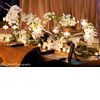 Rustic-wedding-st-regis-deer-valley-table.square